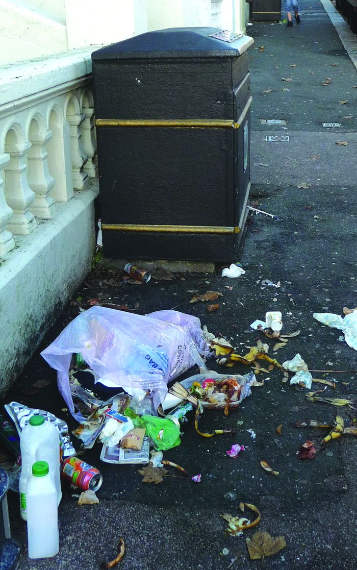 The ugly truth of communal bins