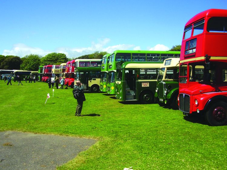 Some of the many buses on display