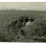 Summerfields - boys in hay. Matty and Sellycombes (?) in hayfield, 1910