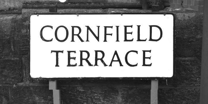 Cornfield Terrace sign
