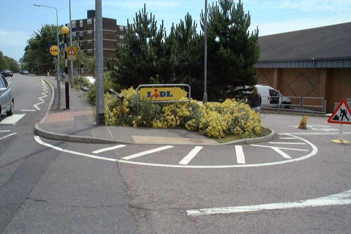 How the shrubbery at Lidls looked before the big chop.