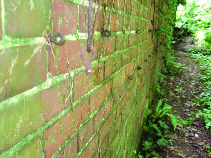 Walled garden brickwork