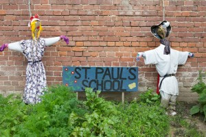 "St Paul's School and St Mary, Star of the Sea both use the garden: each has a 30m2 plot. We counted no less than six scarecrows in the garden – most are made by children and give the garden a friendly feel. Although no crows were seen, Sue Thomson says ""Unfortunately the scarecrows have not kept the pigeons out""."