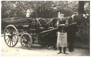 Stricklands Horse & Cart