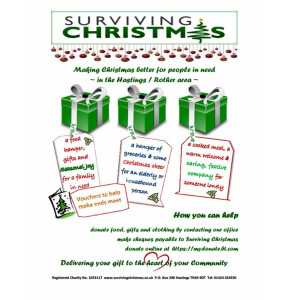 Surviving Christmas 2013  poster